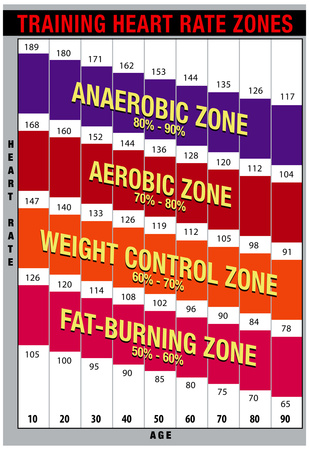 How To Calculate Your Training Heart Rate Zone Southside Fitness